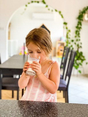 what plantbased milk to give children?