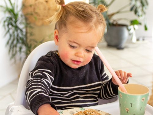 vegan toddler calcium needs