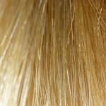 telogen phase of hair growth