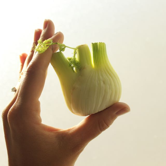 Health Facts Fennel - www.healthyhappysteffi.com