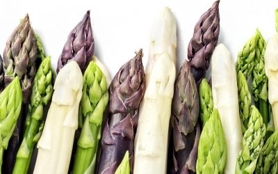 Cheers for the Spears – Spring for Asparagus!