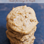 Healthy Peanut Butter Cookie Dog Treats [gluten-free + vegan]