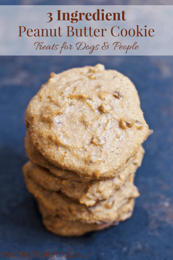 3 Ingredient Peanut Butter Cookie Treats for Dogs & People | Healthy Helper @Healthy_Helper Treat your pup (and yourself!) to these soft-baked Peanut Butter Cookie treats! Only 3 whole food ingredients, these cookies are vegan, gluten-free, and sweetened with dates. Sweet, delicious, and FULL of peanut butter flavor.