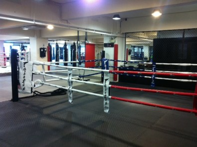 The ring and punching bags