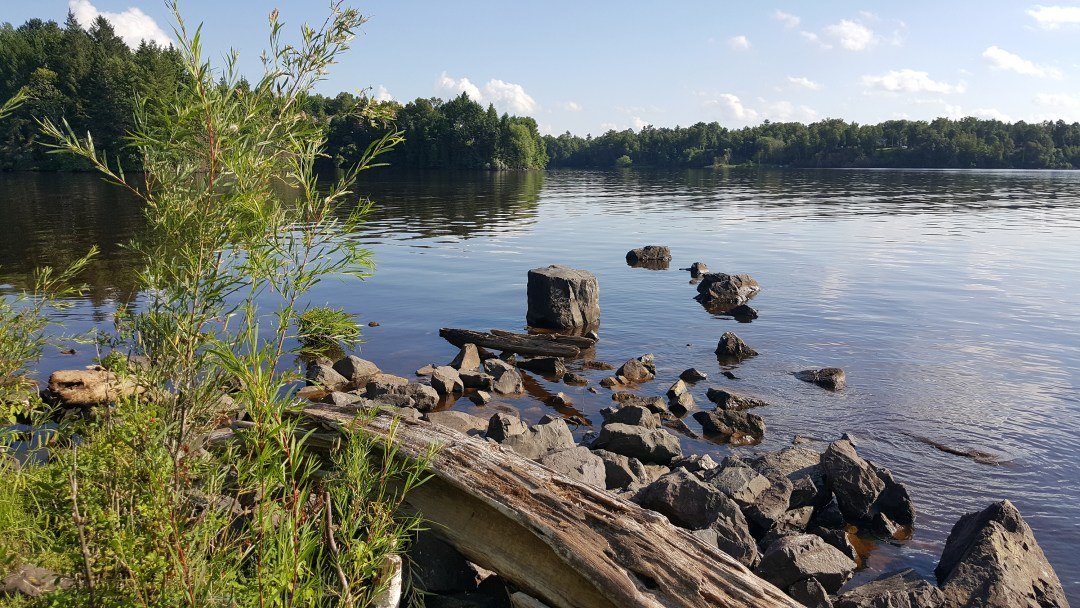 A bay in the St. Louis River system near Duluth, Minn.