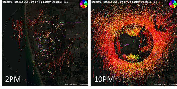 Radar images of bird migration.
