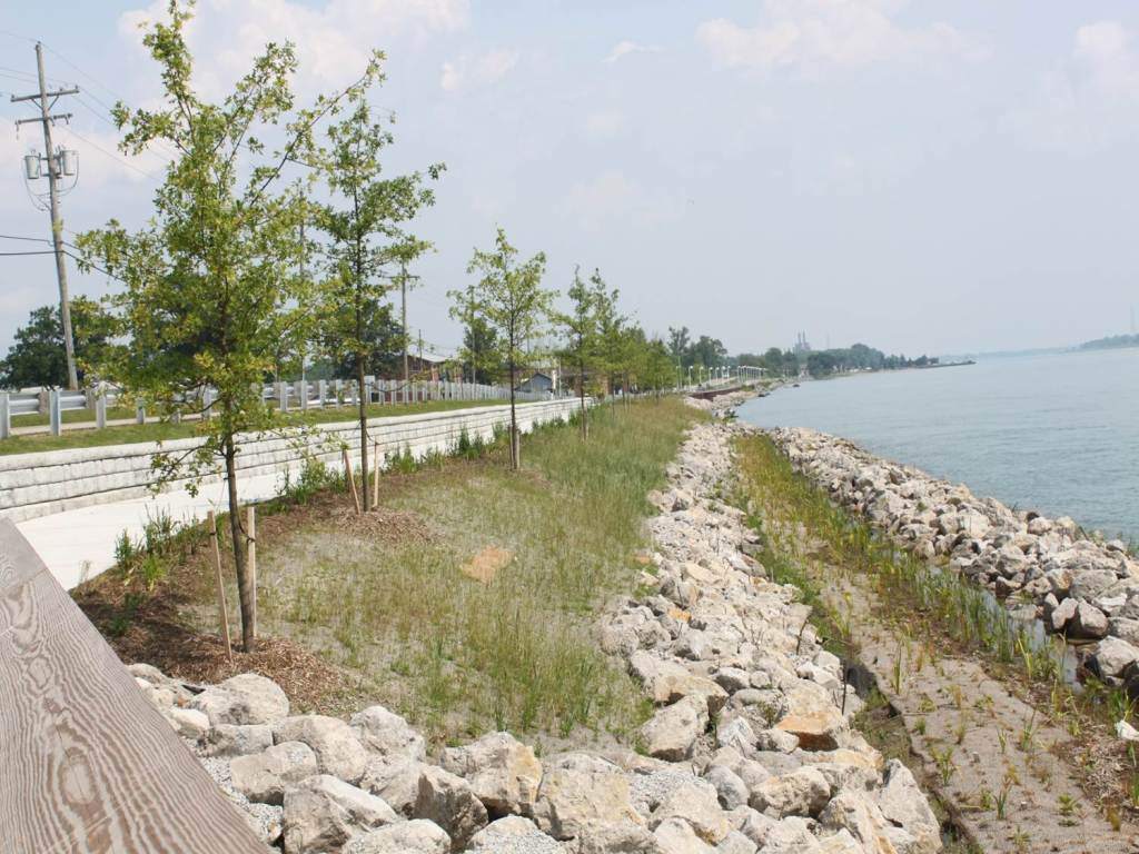 Newly restored shoreline near the St. Clair River