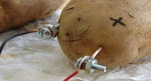 Did You Know that Using a Potato you can Light a Room for a Month?! – VIDEO