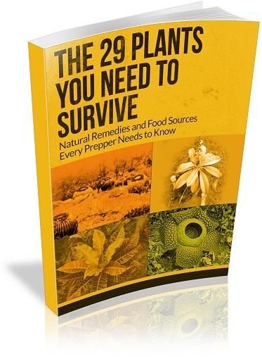 29-plants-cover-3d-no-author-sm