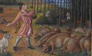 pigsrichesheures