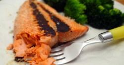 Super Simple Sockeye Salmon