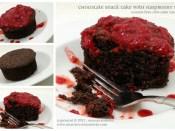 Chocolate Snack Cake with Raspberry Sauce