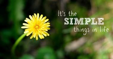 Wordless Wednesday: Simplicity