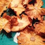 Dried Sunshine (Pineapple)