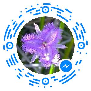 messenger_code_1687660634852014 (1)