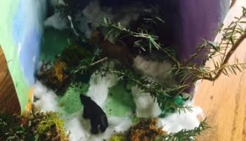 Tundra Diorama in a Box | Healthy Mama Info