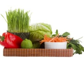 Martin County Wheatgrass and Nutrition