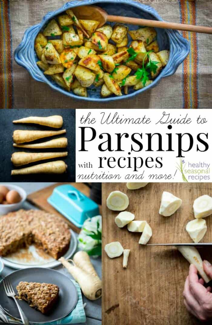The Ultimate Guide to Parsnips! With Recipes, cooking tips and nutritional information. #paleo #vegetable #parsnip