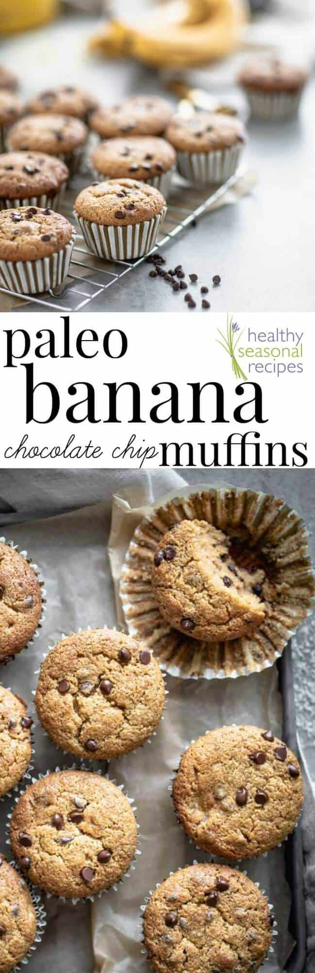 Paleo Banana Muffins with chocolate chips. Made with almond flour and sweetened with maple syrup. #glutenfree #paleo #baking #muffins #healthy #dairyfree #healthyseasonal