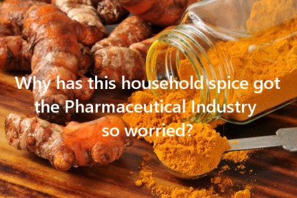 The Asia Wonder Spice Turmeric