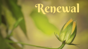 National Renewal Day May 4