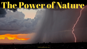 The Power of Nature – Monthly Musings