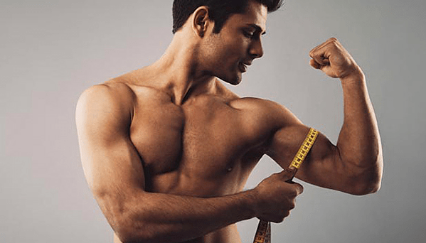 The Average Bicep Size – Ultimate Guide The Best Overview