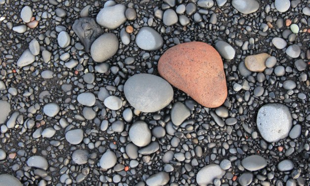 No Stone Unturned: Member risk identification requires comprehensive approach