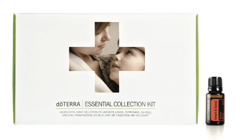 Essentail Collection with Smart and Sassy