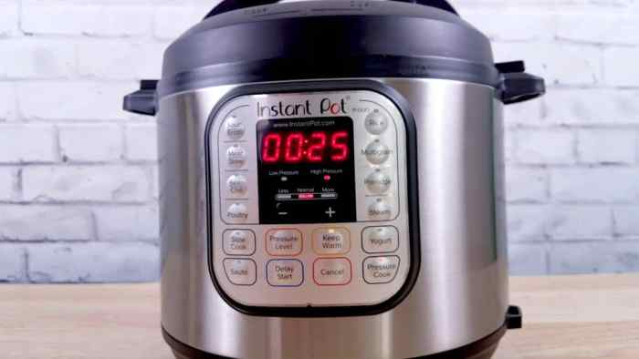 Which Instant Pot Is Best For Me
