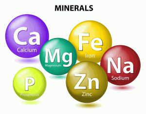 minerals: six essential nutrients