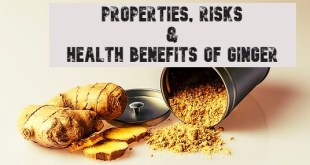 properties, risks and health benefits of ginger