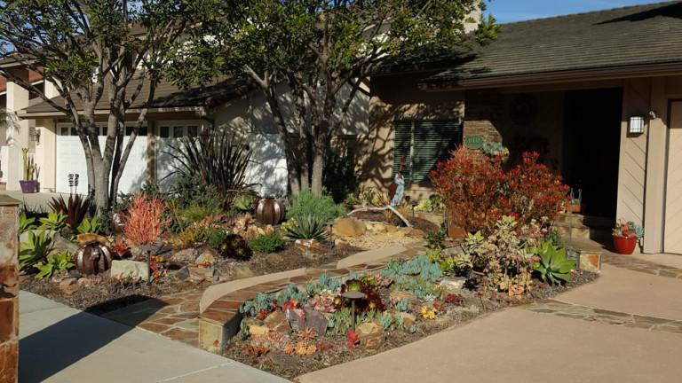 Burrell Garden - featured