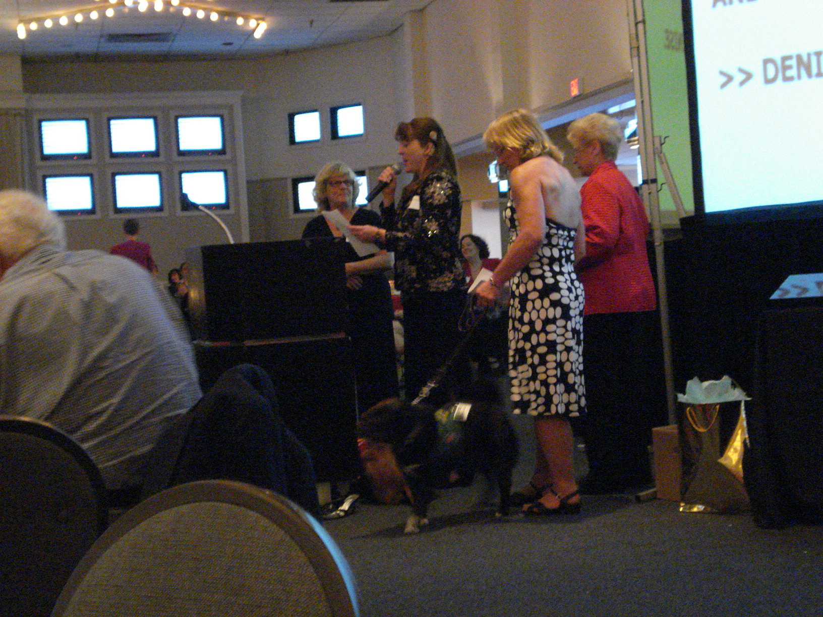 Denise gives a speech w/ Chloe in a down/stay. Puppy Raiser L, Trainer at R of Denise