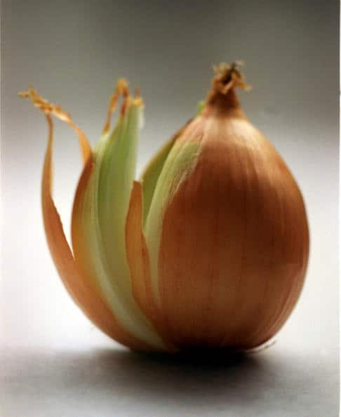 Image result for picture of peeling a onion