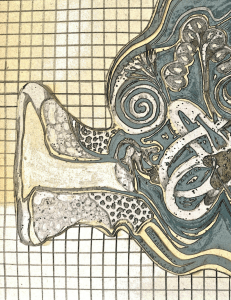 Ear with golden grid background