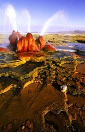Fly Geyser, Black Rock Desert in Nevada