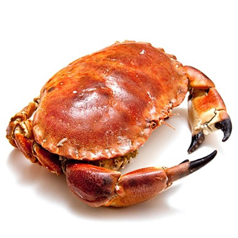 brown-crab.jpg