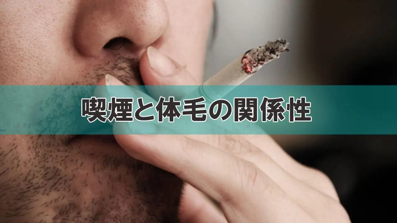 体毛の濃さと喫煙の関係性