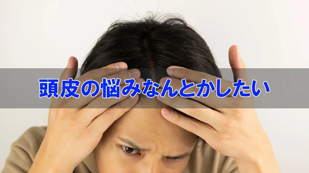頭皮の悩みやトラブルについて
