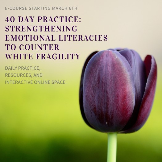 """This e-course announcement shows a purple tulip and background that fades from light tan to bright green. It shares the following information: """"E-course starting March 6th! 40 Day Practice: Strengthening Emotional Literacies to Counter White Fragility. Daily practice, resources, and interactive online community."""""""