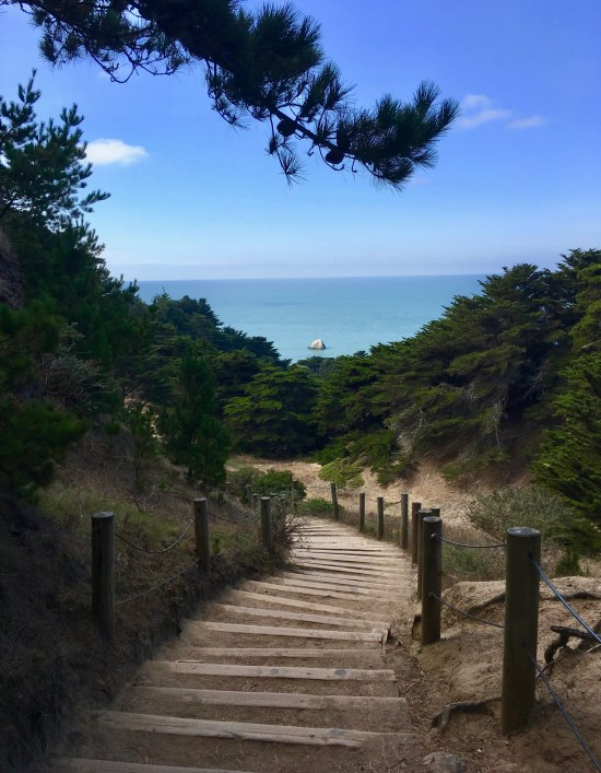 This image shows a wooden staircase curving down to the Pacific Ocean, near San Francisco. The tan and sandy stairs are framed by green trees, blue ocean water, and the blue sky overhead.