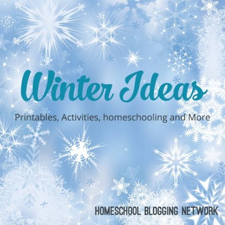 Winter Homeschooling Ideas