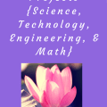 Ideas for summer STEM projects ~ Science, Technology, Engineering, & Math
