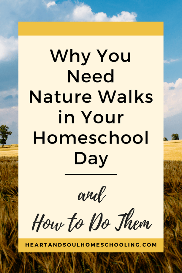 Why You Need Nature Walks in Your Homeschool Day {and How to Do Them}