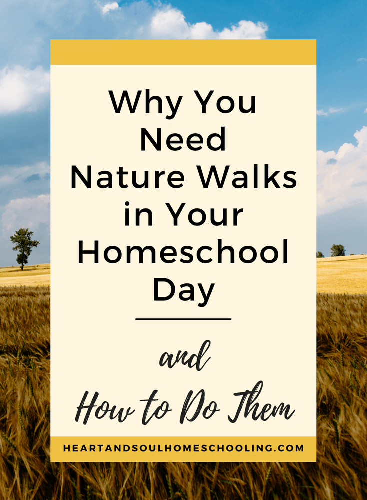 #Homeschool Nature Walks -- Why and How to Do Them | Charlotte Mason #homeschool