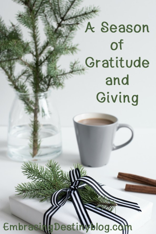 A Season of Gratitude and Giving blog series at Embracing Destiny