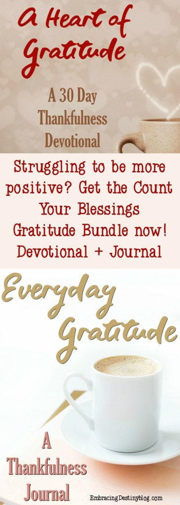 Count Your Blessings Gratitude Devotional and Journal