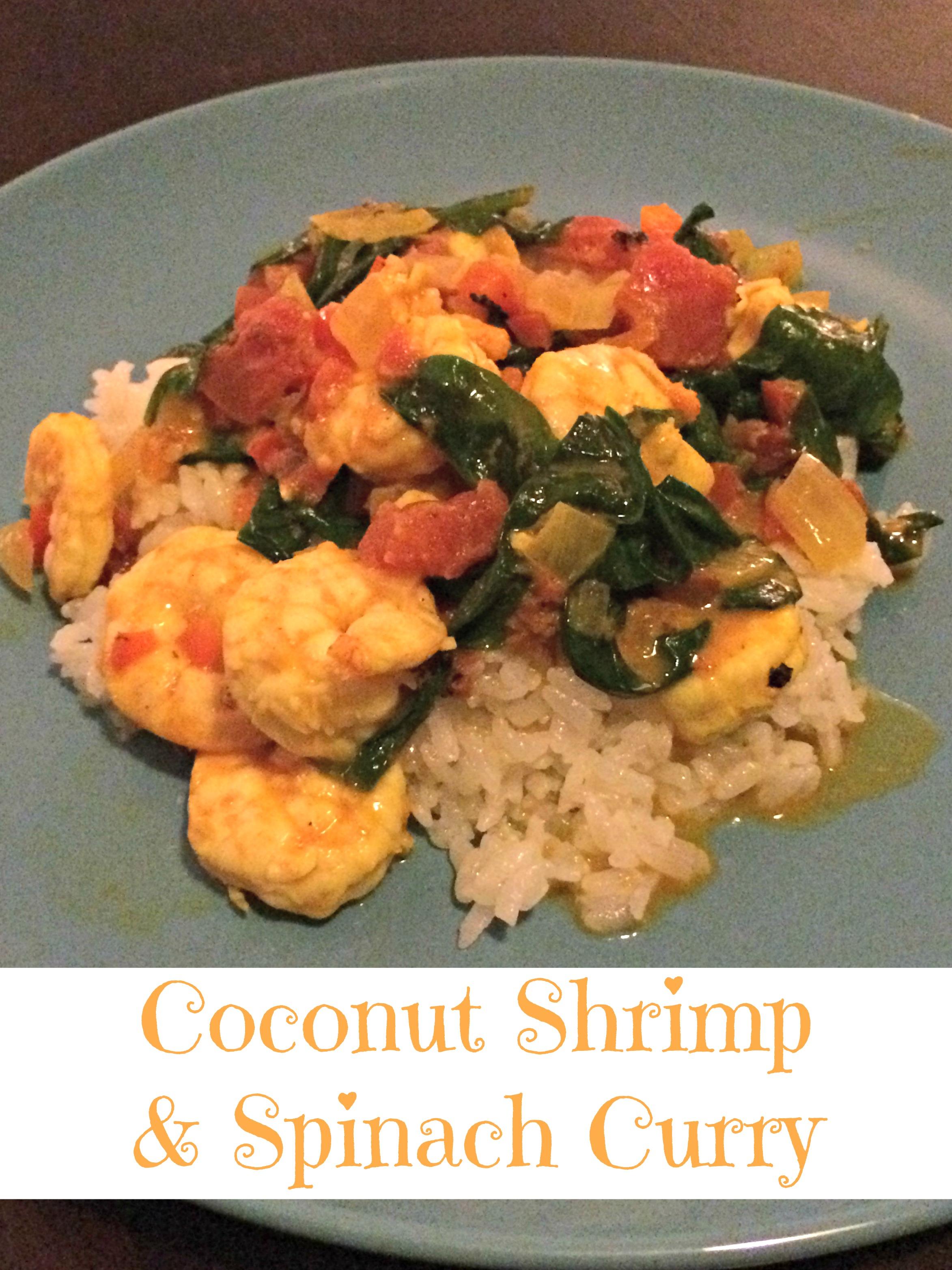 Shrimp Curry Pic