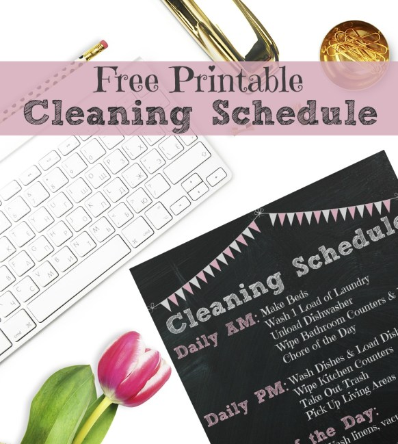 Cleaning Schedule Post Feature Image